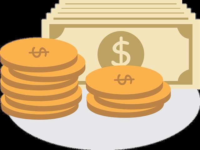 investiční měna